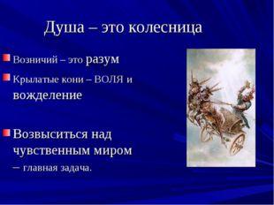 Душа – это колесница Возничий – это разум Крылатые кони – ВОЛЯ и вожделение В
