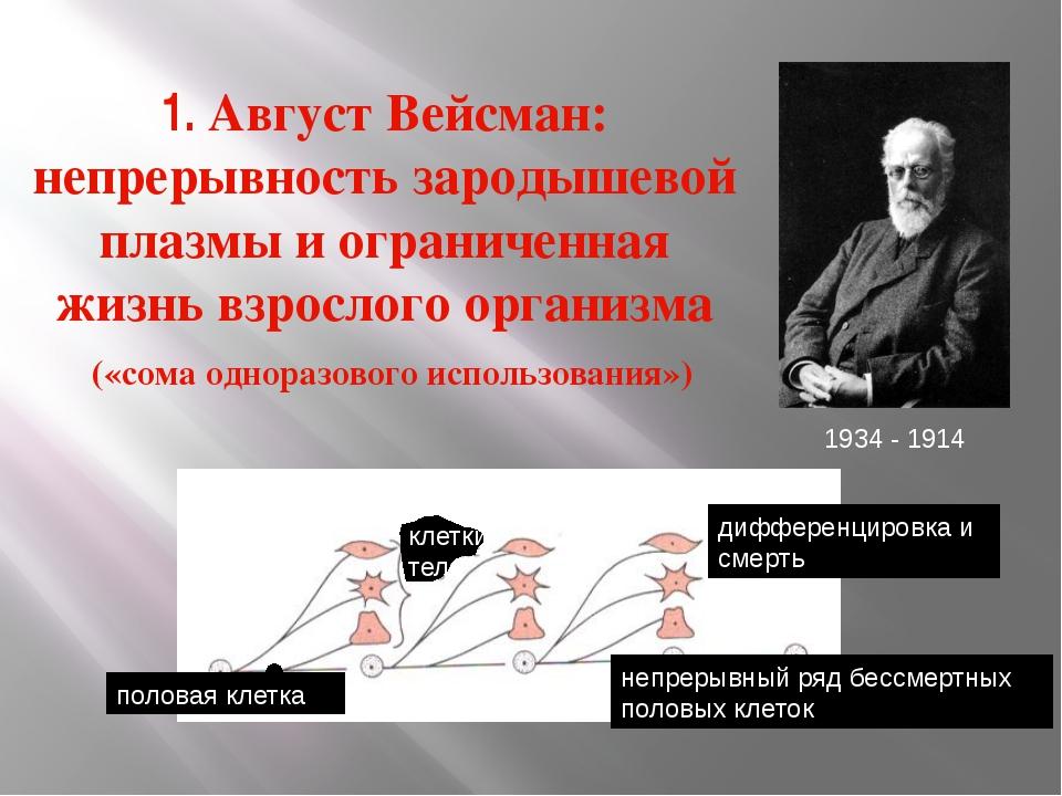 1. Август Вейсман: непрерывность зародышевой плазмы и ограниченная жизнь взро...