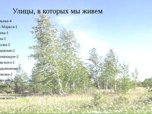 Улицы, в которых мы живем Артемьева-4 Карла-Маркса-1 Лазарева-1 Ленина-1 Мак