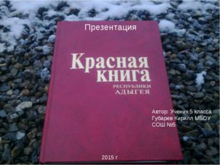 Презентация Автор: Ученик 5 класса Губарев Кирилл МБОУ СОШ №5 2015 г
