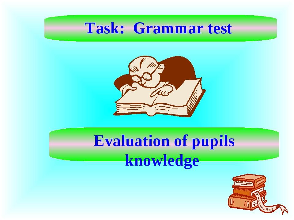 Task: Grammar test Evaluation of pupils knowledge