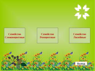 Использованные ресурсы Полевые цветы с бабочками Цветы яблони Одуванчик Шипов