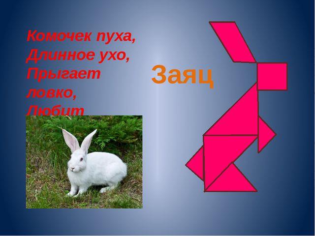 Комочек пуха, Длинное ухо, Прыгает ловко, Любит морковку. Заяц