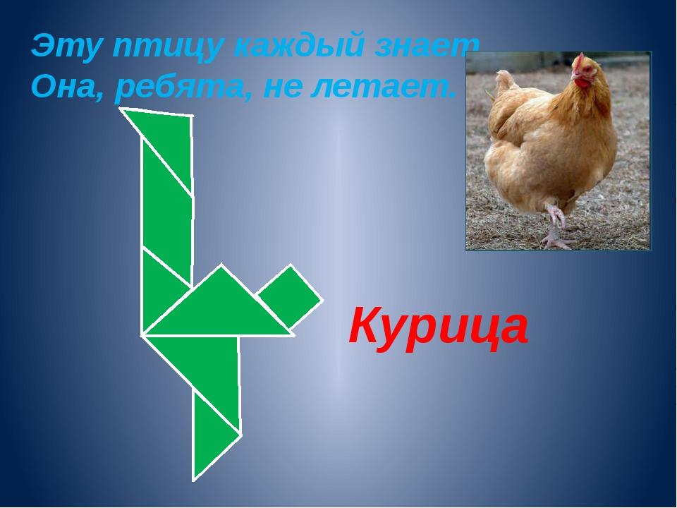 Эту птицу каждый знает. Она, ребята, не летает. Курица