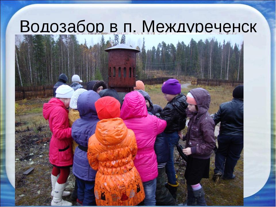 Водозабор в п. Междуреченск * *