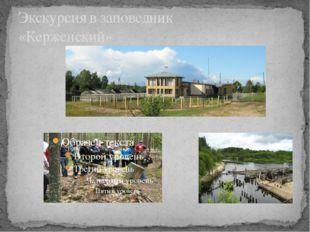 Экскурсия в заповедник «Керженский»