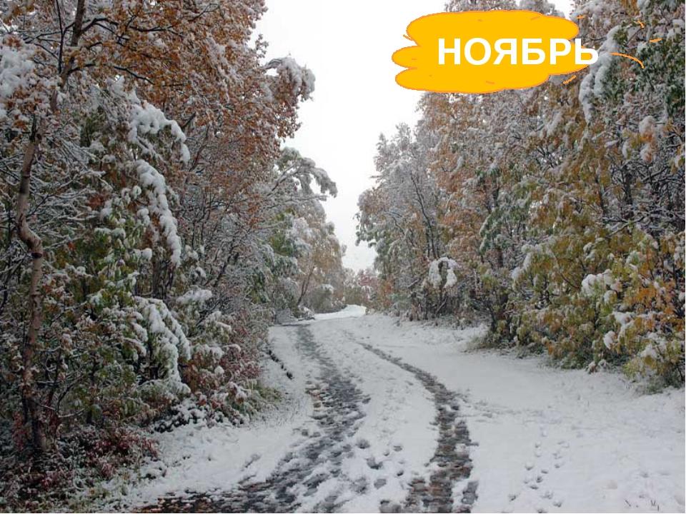 Поле чёрно-белым стало: Падает то дождь, то снег. А ещё похолодало – Льдом ск...