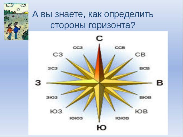 А вы знаете, как определить стороны горизонта?