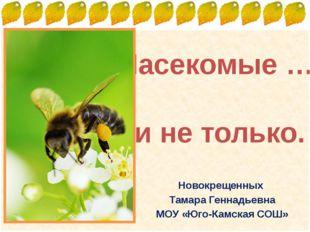 Насекомые … и не только. Новокрещенных Тамара Геннадьевна МОУ «Юго-Камская СО