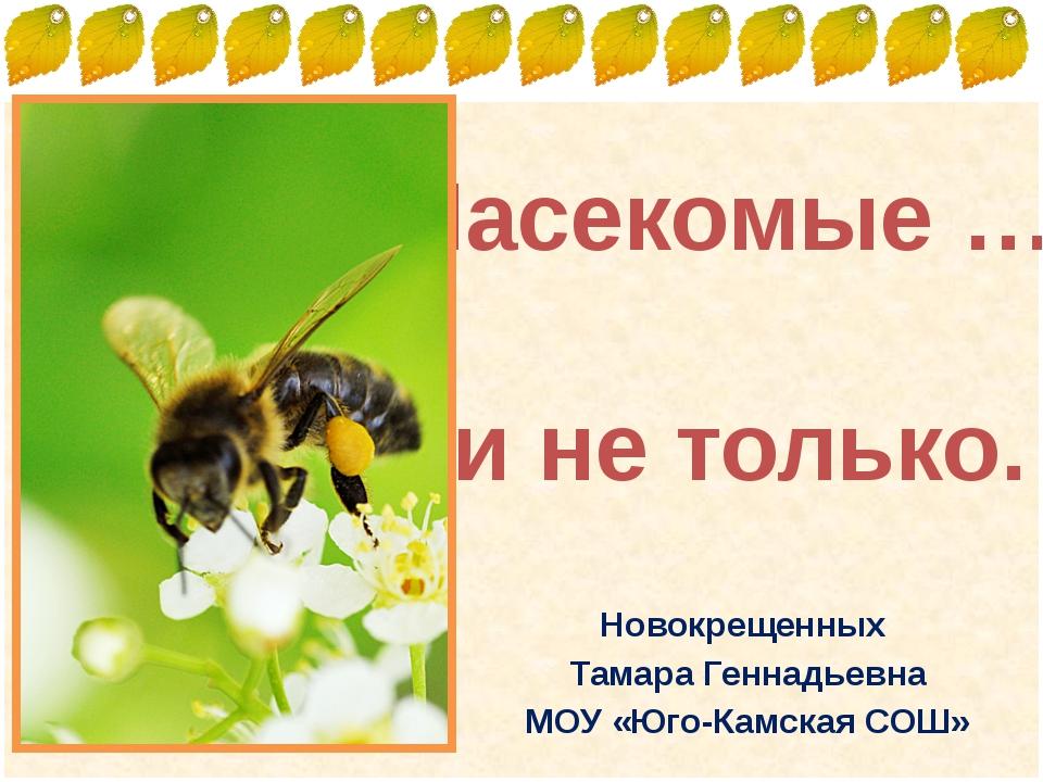 Насекомые … и не только. Новокрещенных Тамара Геннадьевна МОУ «Юго-Камская СО...