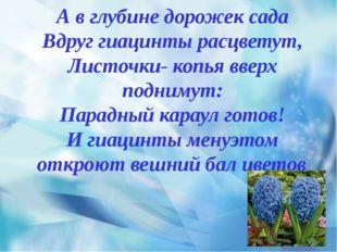 А в глубине дорожек сада Вдруг гиацинты расцветут, Листочки- копья вверх под