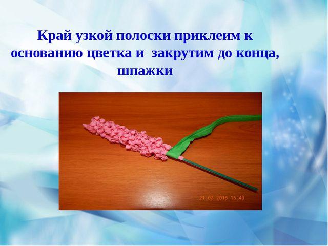 Край узкой полоски приклеим к основанию цветка и закрутим до конца, шпажки