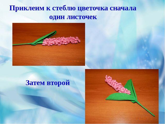 Приклеим к стеблю цветочка сначала один листочек Затем второй