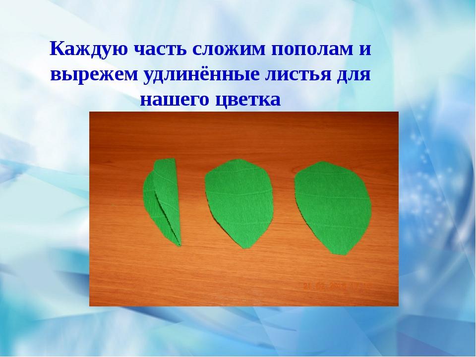 Каждую часть сложим пополам и вырежем удлинённые листья для нашего цветка