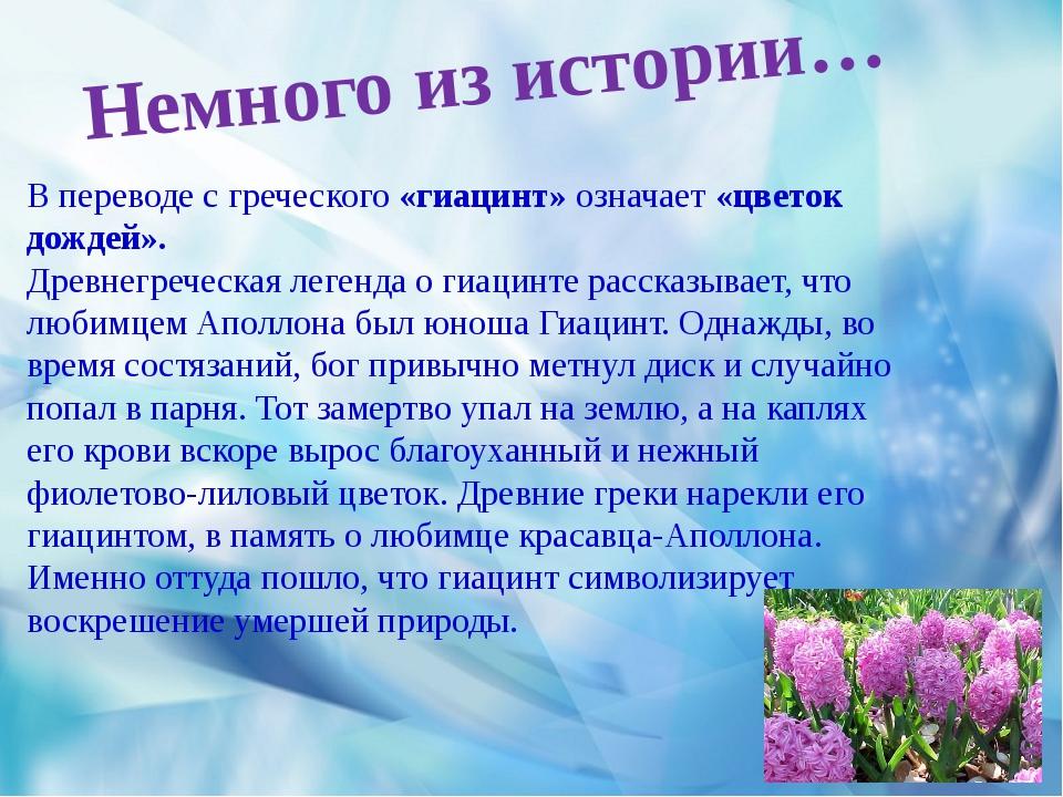 В переводе с греческого «гиацинт» означает «цветок дождей». Древнегреческая...