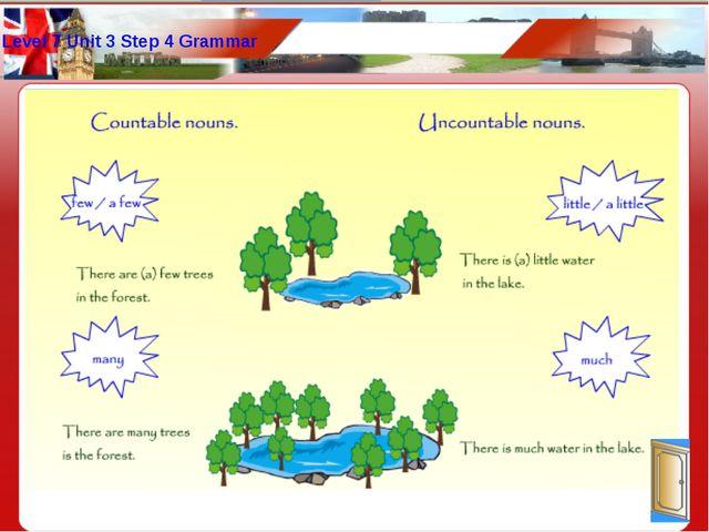Level 7 Unit 3 Step 4 Grammar