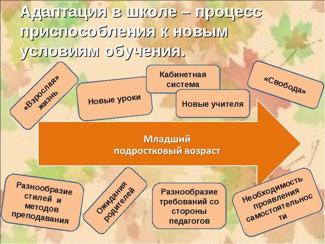 Адаптация в школе – процесс приспособления к новым условиям обучения.  Новые...