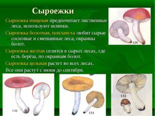 Сыроежки Сыроежка пищевая предпочитает лиственные леса, используют шляпки. Сы
