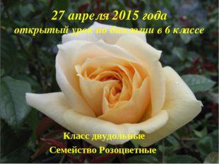 Класс двудольные Семейство Розоцветные 27 апреля 2015 года открытый урок по б