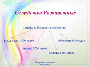 Семейство Розоцветные Семейство Розоцветные включает: таволговые – 300 видов