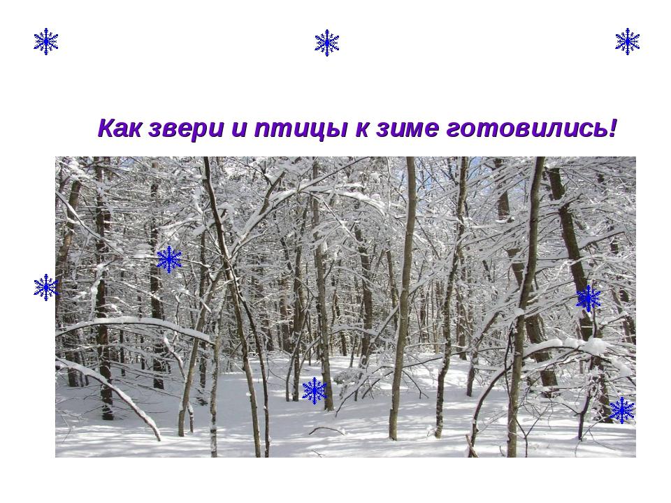 Как звери и птицы к зиме готовились!