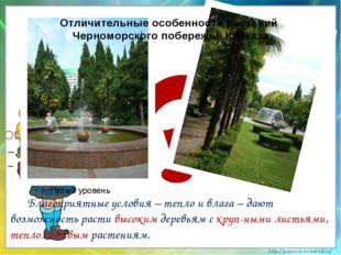 Отличительные особенности растений Черноморского побережья Кавказа Благоприя
