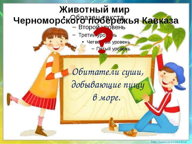 Обитатели суши, добывающие пищу в море. Животный мир Черноморского побережья...