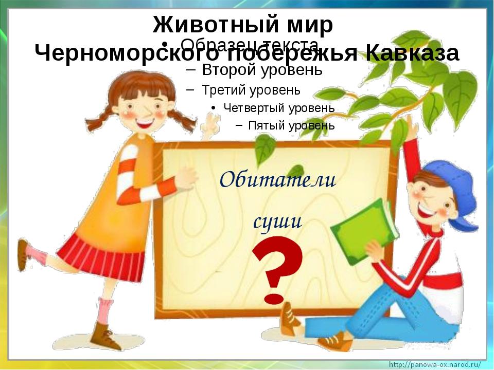 Обитатели суши Животный мир Черноморского побережья Кавказа