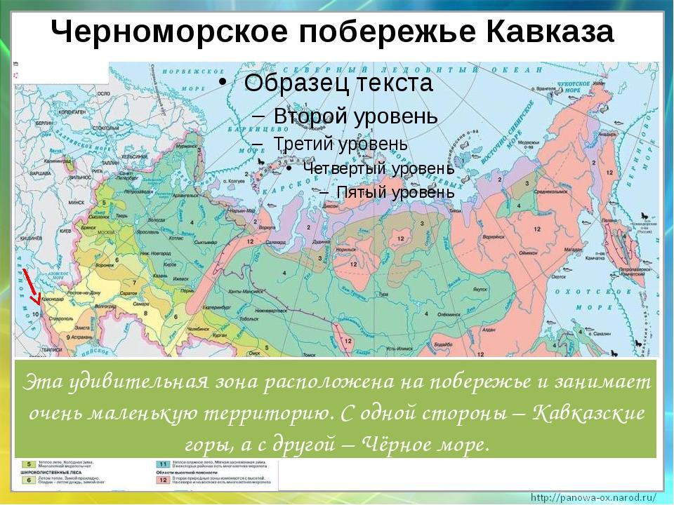 Черноморское побережье Кавказа Эта удивительная зона расположена на побережье...