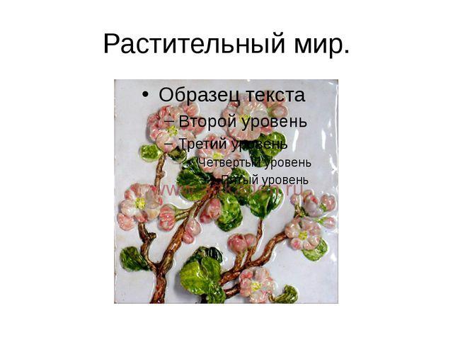 Растительный мир.