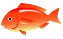 C:\Users\Cabinet\Downloads\рыба.jpg