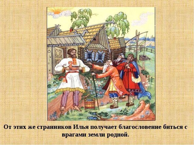 От этих же странников Илья получает благословение биться с врагами земли родн...