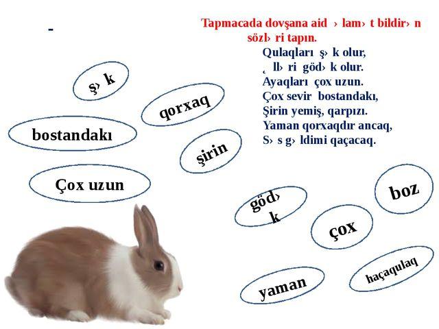 - Tapmacada dovşana aid əlamət bildirən sözləri tapın. Qulaqları şək olur, Əl...