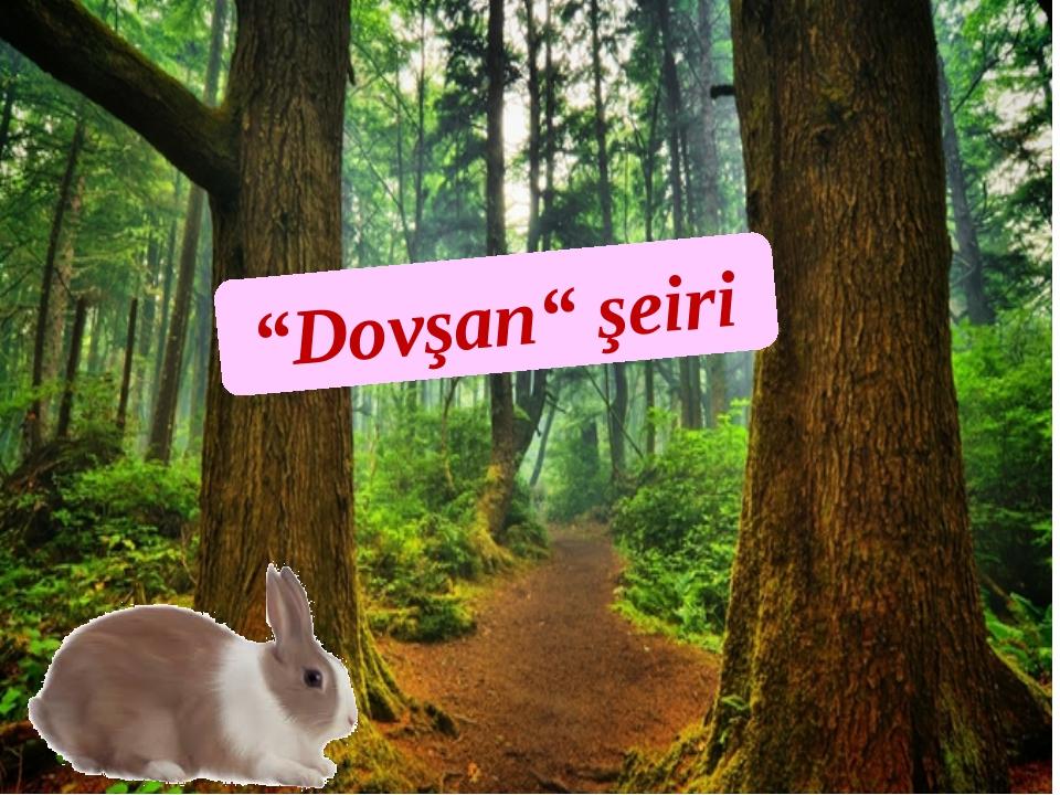 """""""Dovşan"""" şeiri"""