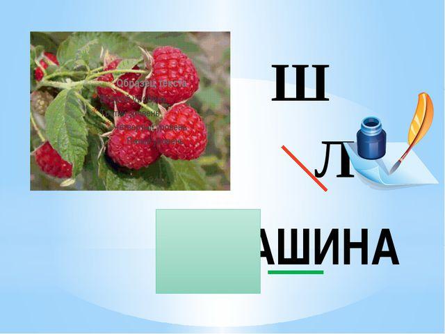 Ш Л МАШИНА