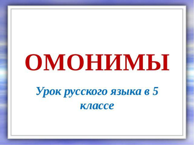 Омонимы конспект-презентация