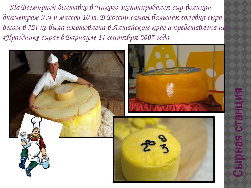 Сырная станция На Всемирной выставке в Чикаго экспонировался сыр-великан диам...
