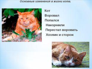 Основные изменения в жизни кота. Кот Воровал Попался Накормили Перестал воров