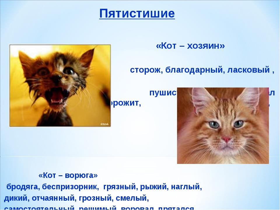 Пятистишие «Кот – хозяин»  сторож, благодарный, ласковый , сытый, пушистый...