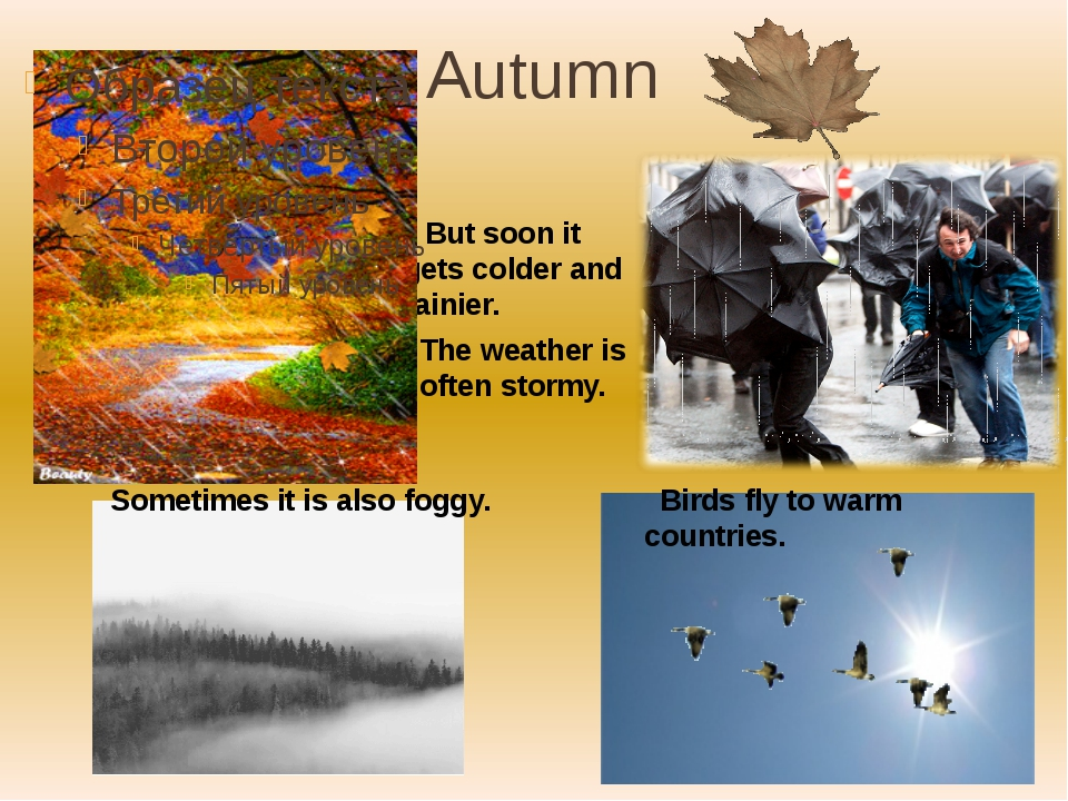 Autumn But soon it gets colder and rainier. Birds fly to warm countries. The...