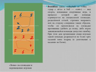 Волейбол (англ. volleyball от volley — «удар с лёта» и ball — «мяч») — вид с