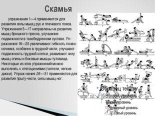 упражнения 1—4 применяются для развития силы мышц рук и плечевого пояса. Упр
