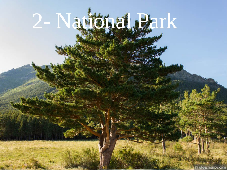 2- National Park