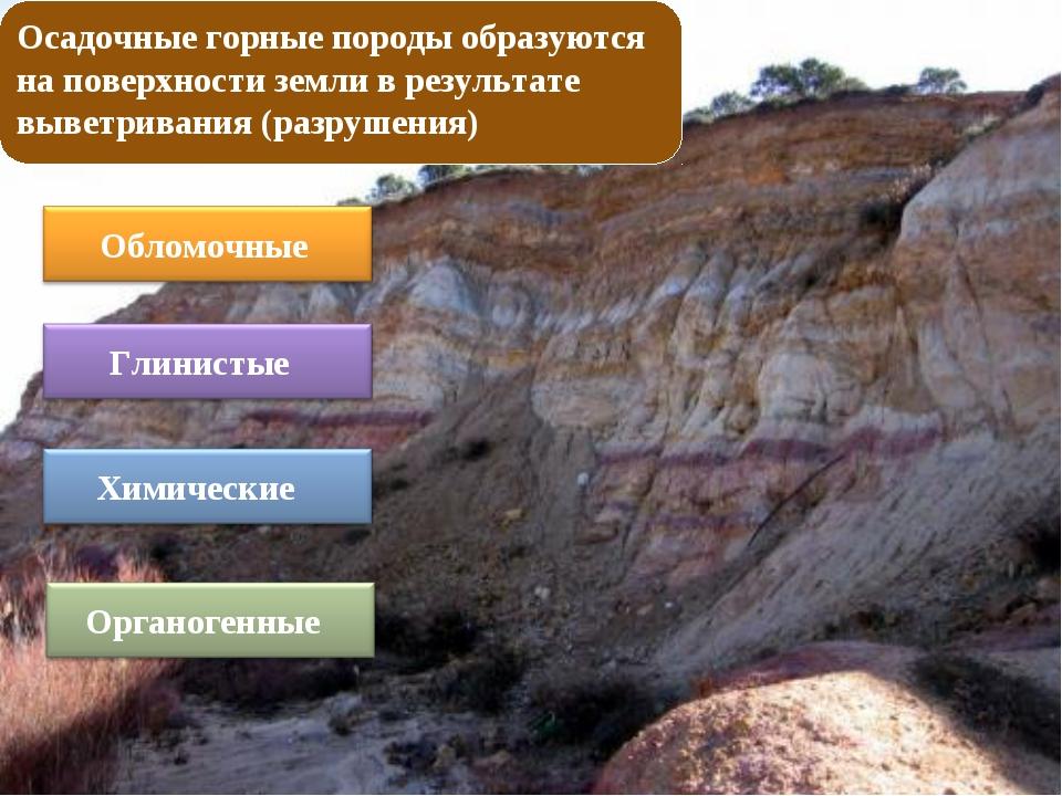 Осадочные горные породы образуются на поверхности земли в результате выветрив...