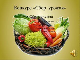 Конкурс «Сбор урожая»