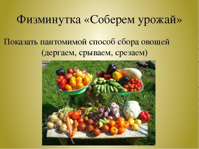 Физминутка «Соберем урожай» Показать пантомимой способ сбора овощей (дергаем,...