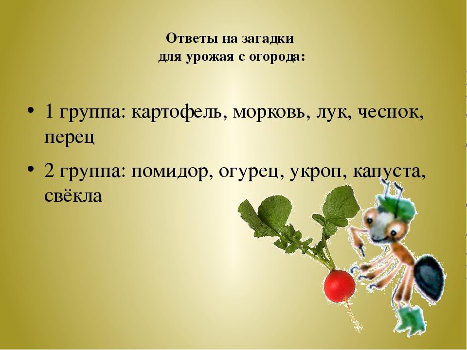 Ответы на загадки для урожая с огорода: 1 группа: картофель, морковь, лук, че...