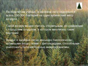 По подсчётам учёных, в хвойном лесу содержится всего200-300 бактерий на один