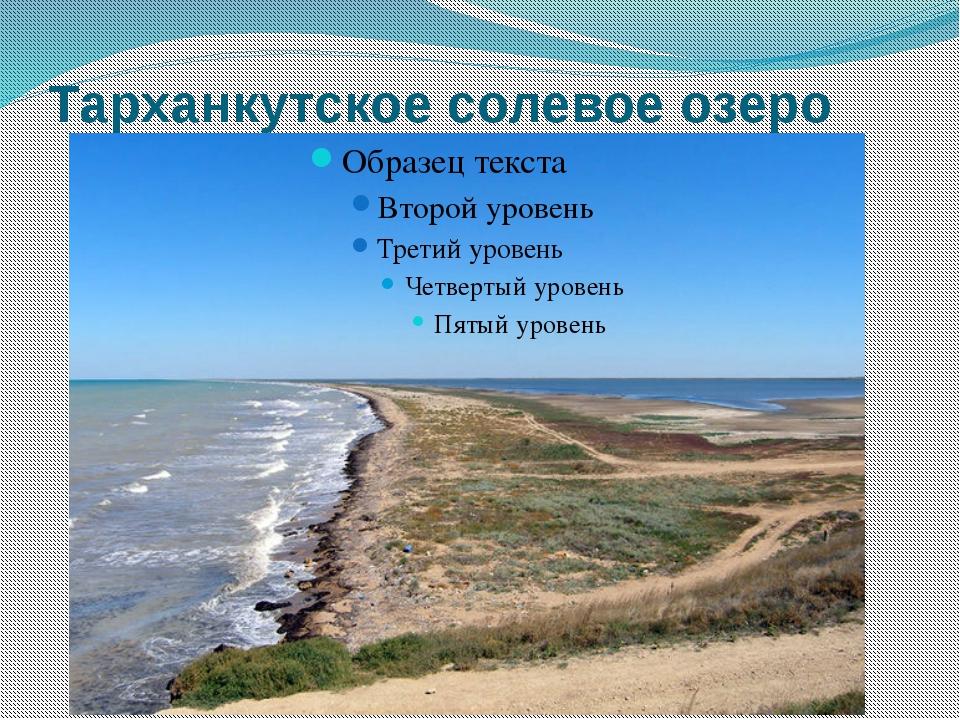 Тарханкутское солевое озеро