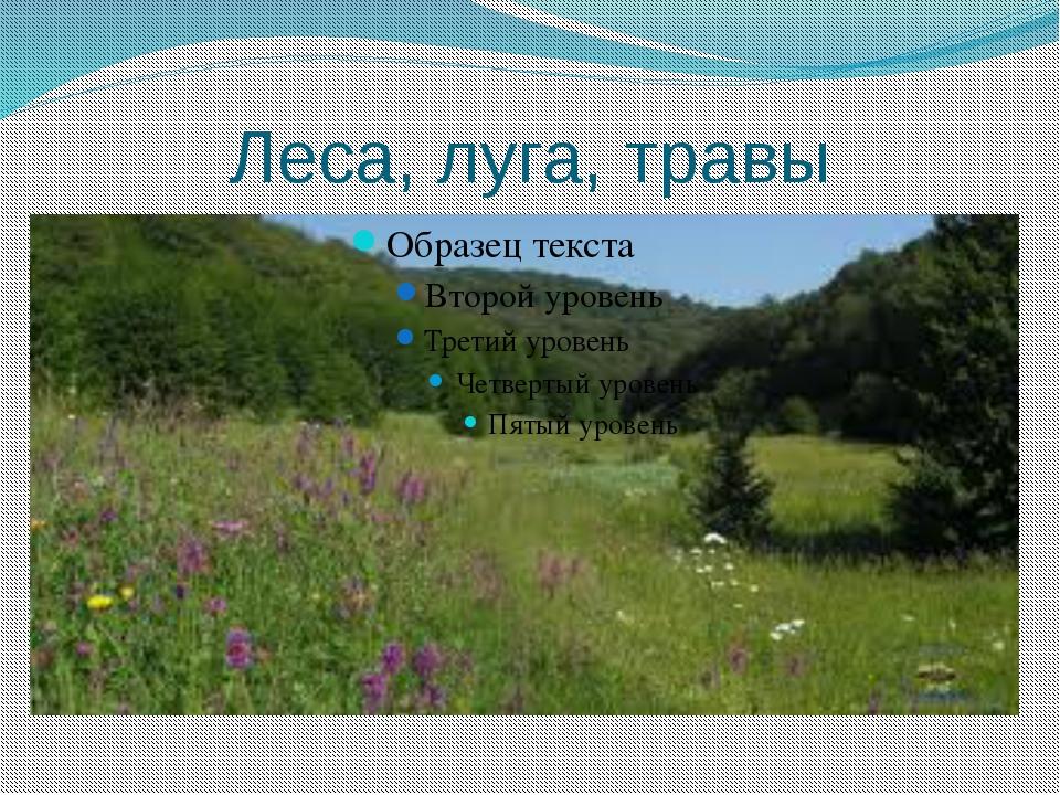 Леса, луга, травы